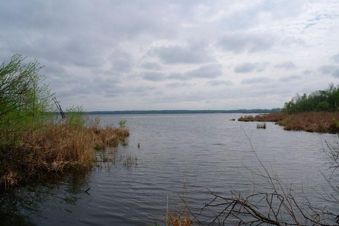 Рыбалка на Муромском озере