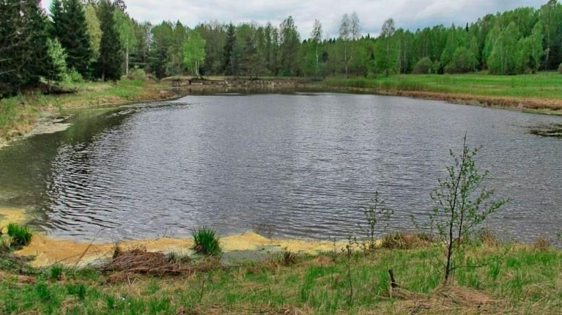 Рыбалка на пруду Васюнино