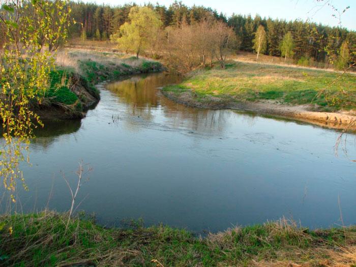 Рыбалка на реке Молокча